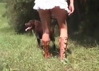 Playful brown dog fucked her wet vagina