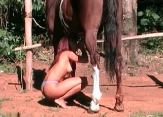 Redhead babe is sucking a massive horse dick