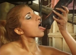 A cute glamorous female is licking a long horse penis