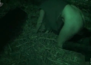 Pig sniffs and fucks her tight crack